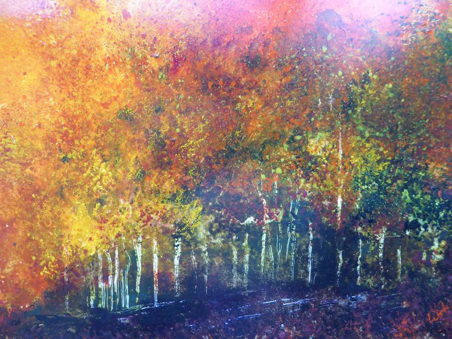 foret22x32